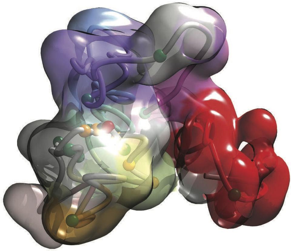 Representación 3D de un fragmento de ADN humano- Imagen Marc Martí-Renom, CNAG-CRG