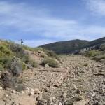 Los suelos, principales almacenes de carbono del planeta
