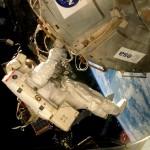 Hongos de la Antártida sobreviven a condiciones marcianas en la Estación Espacial Internacional