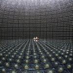 Premio Rosenblueth a investigación sobre neutrinos que podría ayudar a entender la naturaleza de la relación entre materia y antimateria
