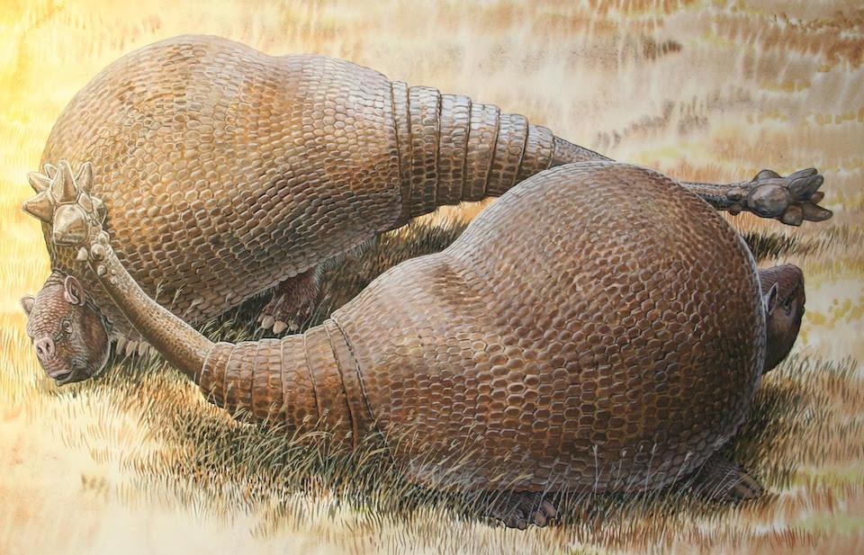 Gliptodontes- Peter Schouten