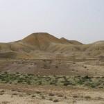 Los microbios del suelo, indicadores de los efectos del cambio climático