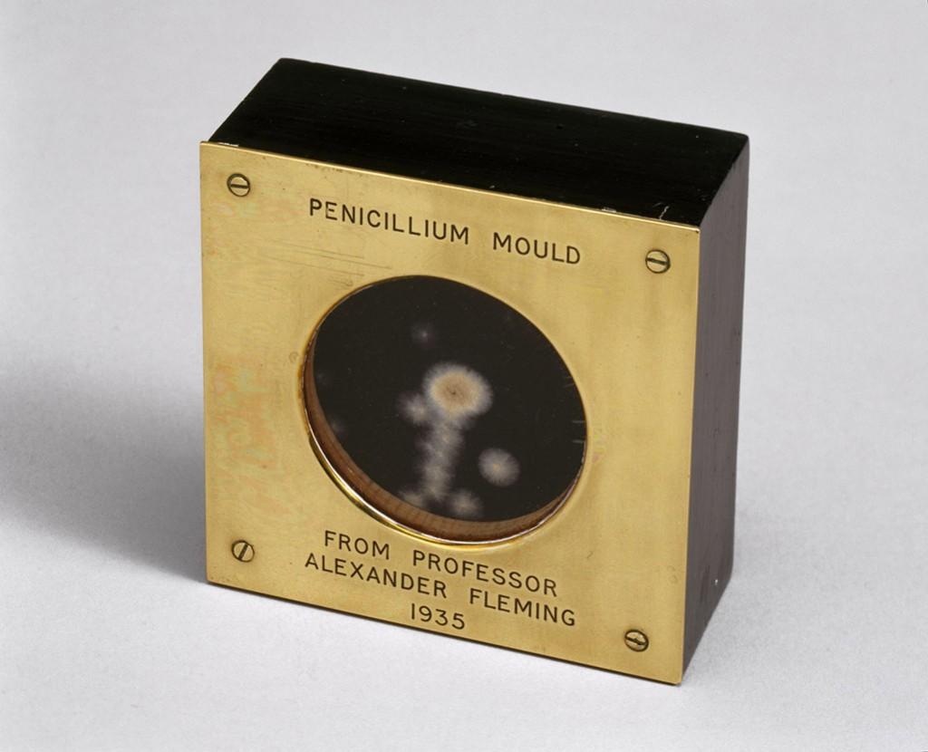 Muestra de moho Penicillium presentada por Alexander Fleming a Douglas Macleod , 1935