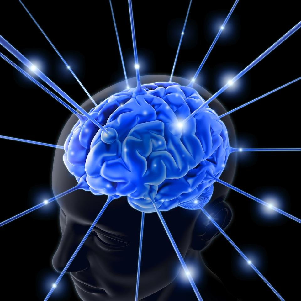 Lo que llega al cerebro- Can Stock Photo Inc