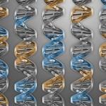 """La """"célula mínina"""", sólo 473 genes para la vida, creada por el equipo de Craig Venter, creador del primer genoma artificial"""