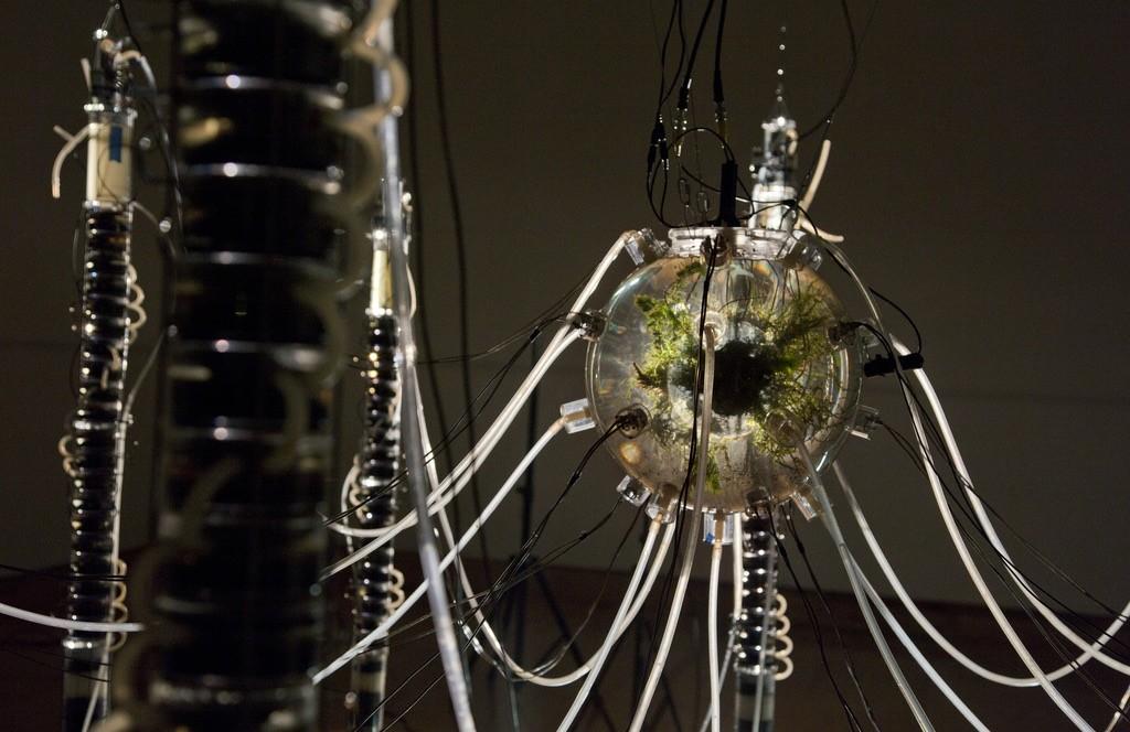 Robots híbridos nómadas- de Gilberto Esparza