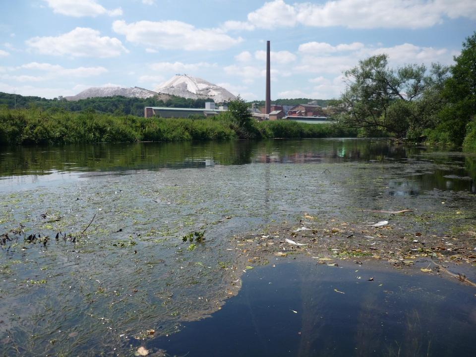 Las actividades humanas aumentan la salinidad del agua dulce