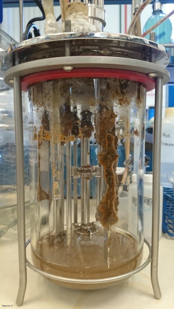 Reactor para eliminar ampicilina de aguas residuales