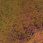 El desierto de Rub al Khali, visto por el satélite Sentinel-2A