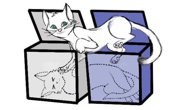 Un gato de Schroedinger vivo y muerto en dos cajas al mismo tiempo