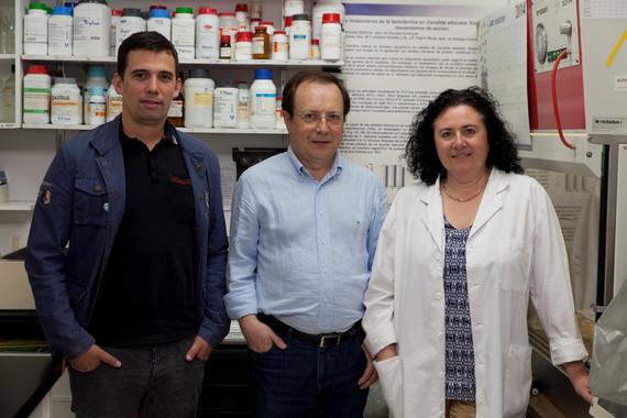 De izquierda a derecha, Maikel Acosta, José Fernando Fierro y María Teresa Andrés. / Uniovi