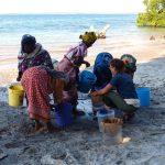 Restos de arroz y frijol muestran evidencias de como una lengua malayo-polinesia viajó 6,000 kms