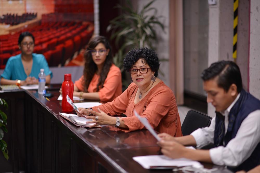 La directora del Centro de Estudios para la Igualdad de Género y Derechos Humanos, del Congreso de Veracruz, Martha Mendoza Parissi