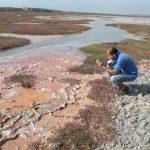 Análisis de tapetes microbianos en busca del origen de la vida y para explorar otros planetas