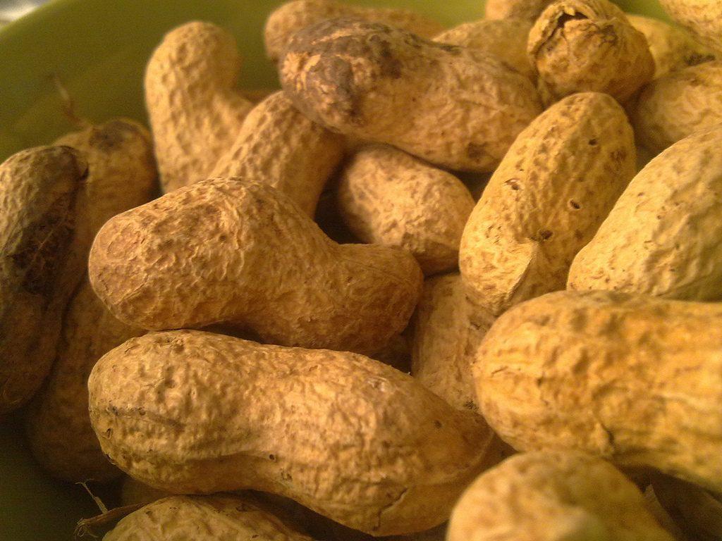 Biosensores para evitar la alergia al cacahuete después de un beso
