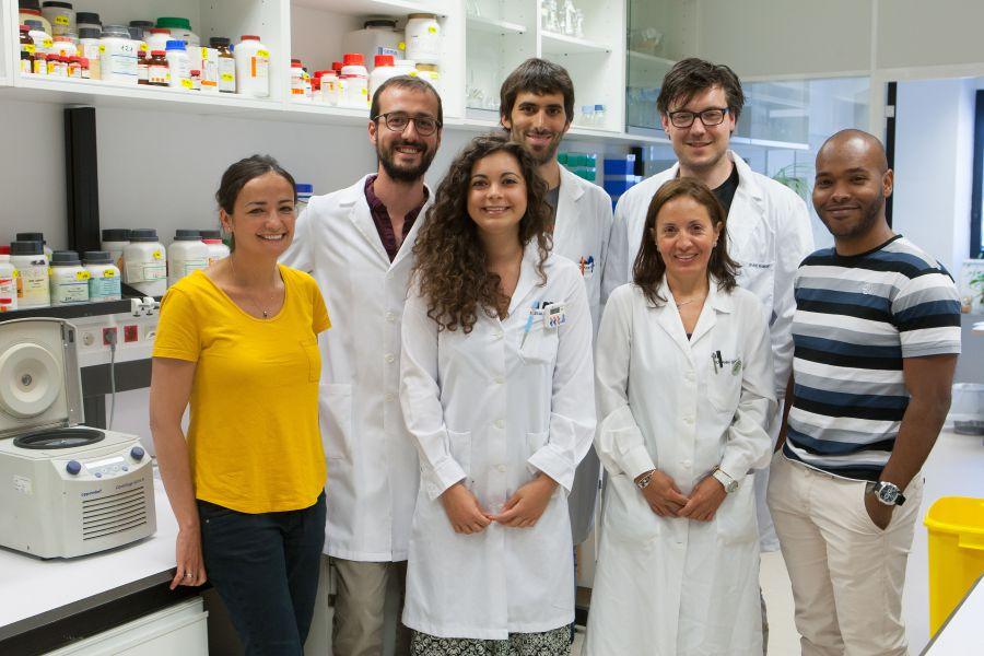 Maite Huarte y Francesco Marchese (primera y segundo por la izquierda) junto a su equipo de investigadores del CIMA. / Manuel Castells