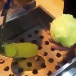 Como hacer lechuga en tres pasos (VIDEO)