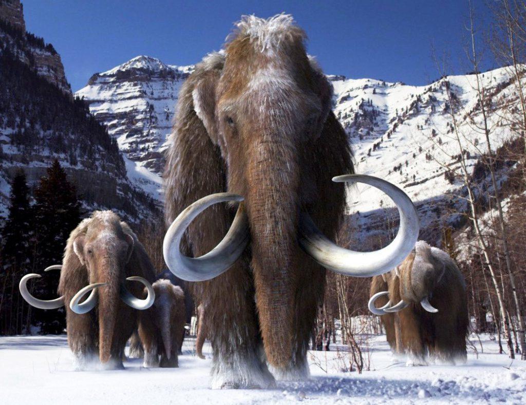 Manada de mamutes