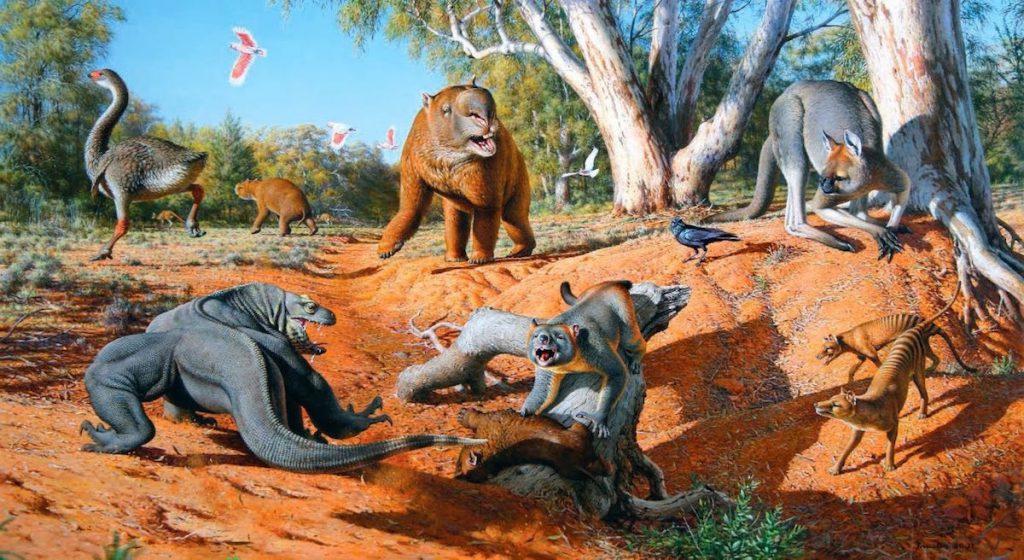 Megafauna australiana, Paleoceno