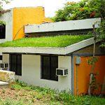 """""""Techos verdes"""" disminuyen la temperatura de las casas hasta 17º con el exterior"""