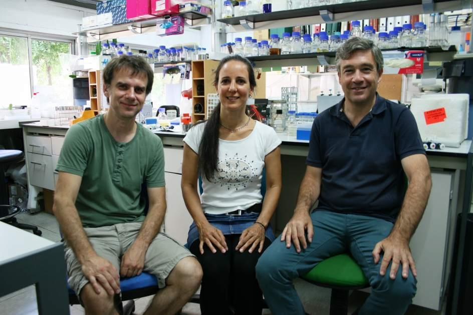 De izq. a dcha., los investigadores de la Universidad de Sevilla Veit Goder, Leticia Lemus y Manuel Muñiz. / US