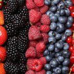 Vino de frutos rojos, sin alcohol, para tratar la diabetes