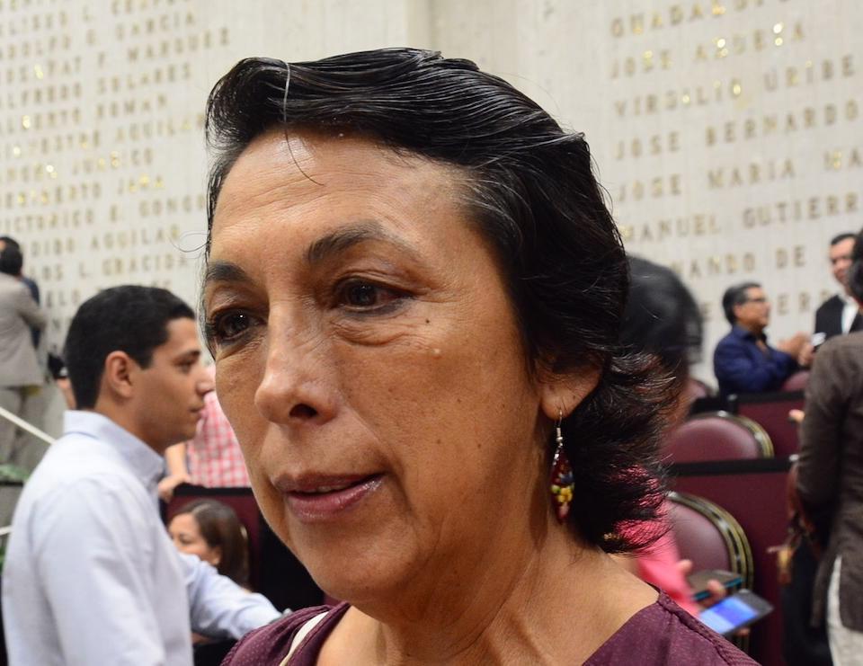 Diputada Minerva Salcedo Baca