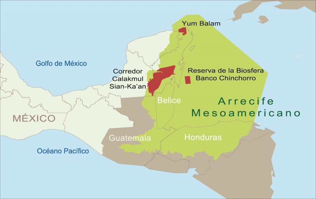 ¿Cómo preservar el Sistema Arrecifal Mesoamericano?
