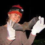 """Murciélagos """"Los Amos de la Noche"""": Sábados en la Ciencia"""