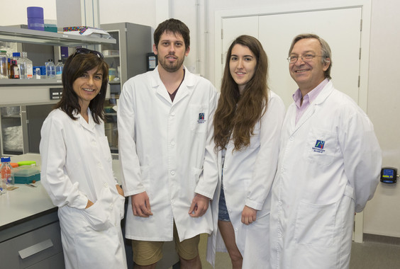 Miembros del Grupo de Investigación en Neurobiotecnología de la Universitat Jaume I de Castellón. / UJI