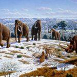 Mamuts y rinocerontes habitaron el noreste peninsular hace más de 40.000 años