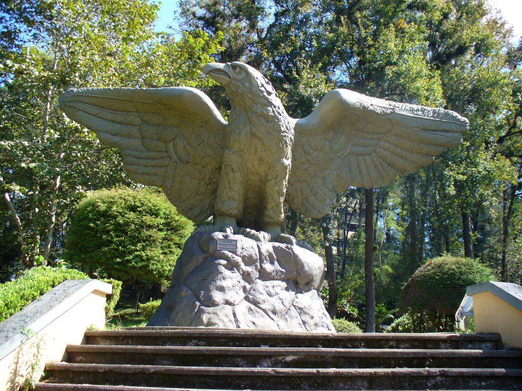 Escultura de El Águila, de Guillermo Rodríguez, Rectoría de la UV, zona de Los Lagos