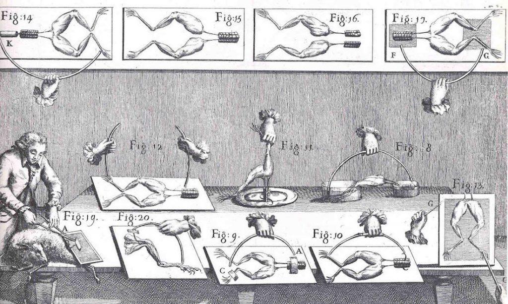 Los experimentos eléctricos de Luigi Galvani