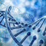Una nueva maquinaria de reparación de errores en el ADN