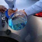 Bioetanol a partir de desechos de agave, alternativa para el combustible automótriz