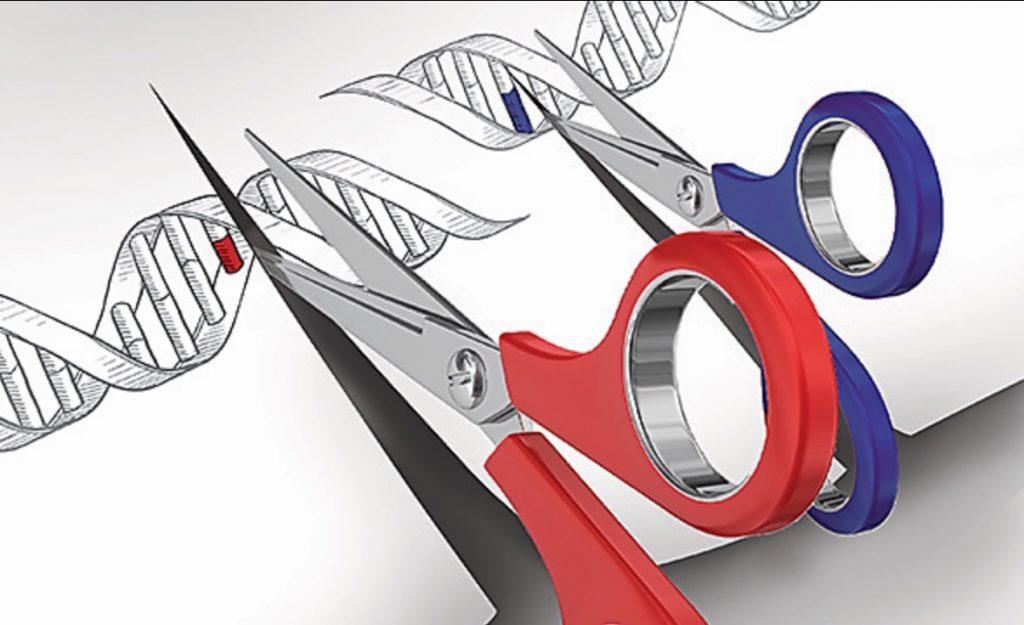 Otorgan al MIT y a la Universidad de Harvard la patente de la técnica para editar genomas
