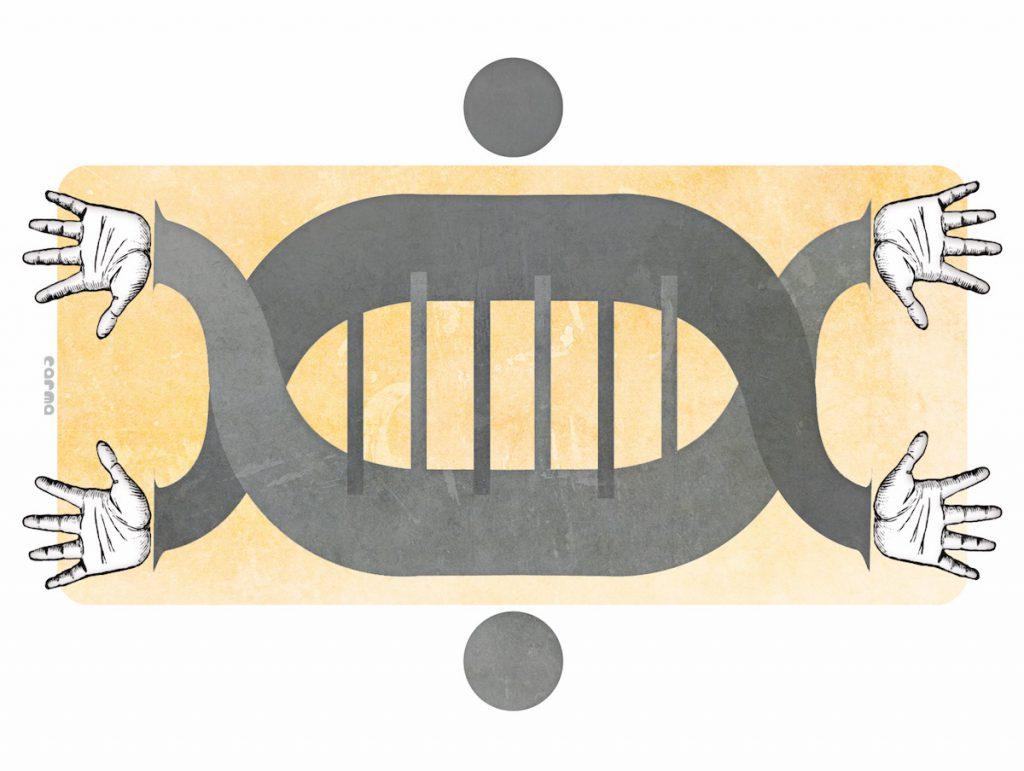 La doble hélice del ADN-3Planos, Sinc
