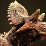 Paleontólogos mexicanos descubren nuevo dinosaurio en Coahuila