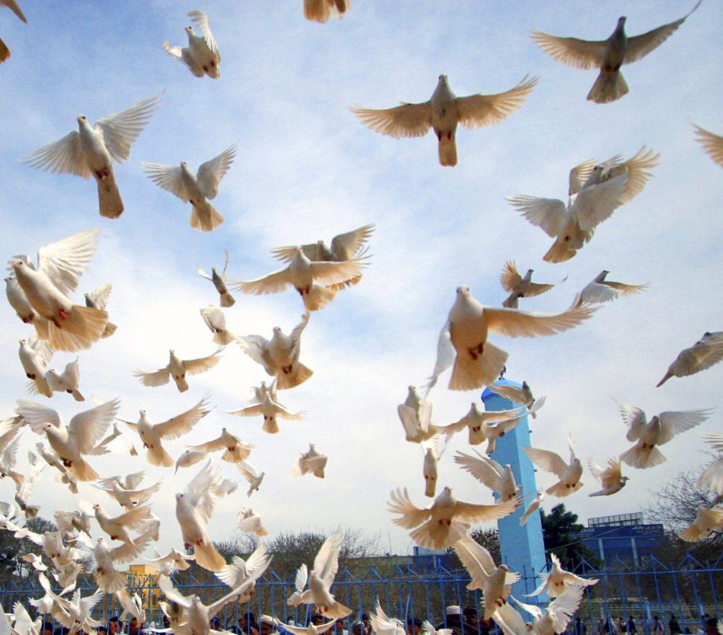 ¿Qué es el Día Internacional de la Felicidad?. 20 de marzo