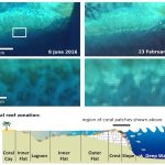 La decoloración de la Gran Barrera de Coral vista desde el espacio por Sentinnel 2