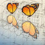 Mariposas Monarca y su reflejo en el agua- Rafael Araujo