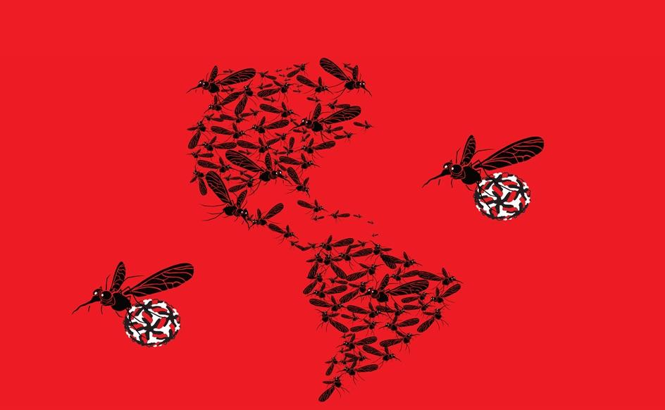 Mosquitos en América- Sharon Isern