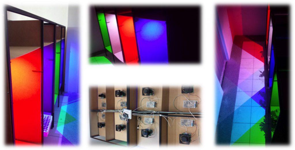 ¿Qué es la fotomorfogénesis? La incidencia en las plantas de la luz y el color