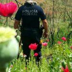 Necesaria la prevención constructiva para frenar criminalidad