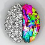 La creatividad puede desarrollarse mediante la educación