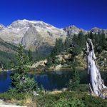 Las temperaturas en el Pirineo aumentan cada vez más rápido