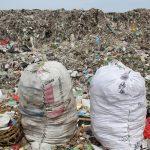 Unas 8,300 millones de toneladas de plástico circulan por el mundo
