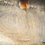 Para las pinturas rupestres en Cuba usaron excremento de murciélago