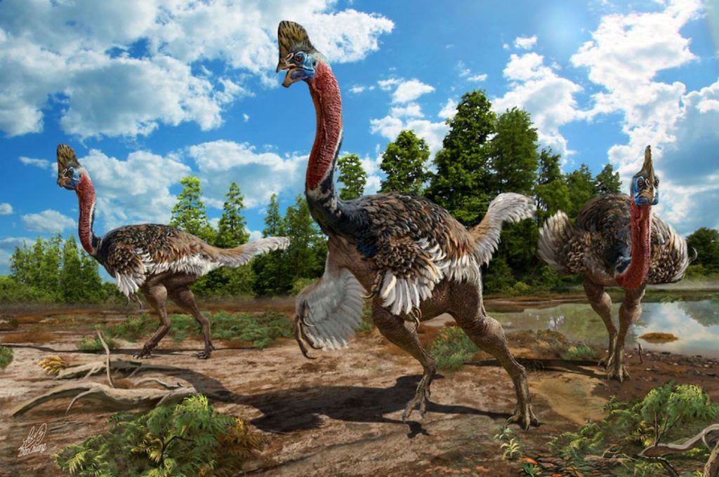 Dinosaurio Corythoraptor jacobsi- Zhao Chuang