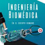 Ingeniería Biomédica en el cuerpo humano: órganos artificiales y prótesis